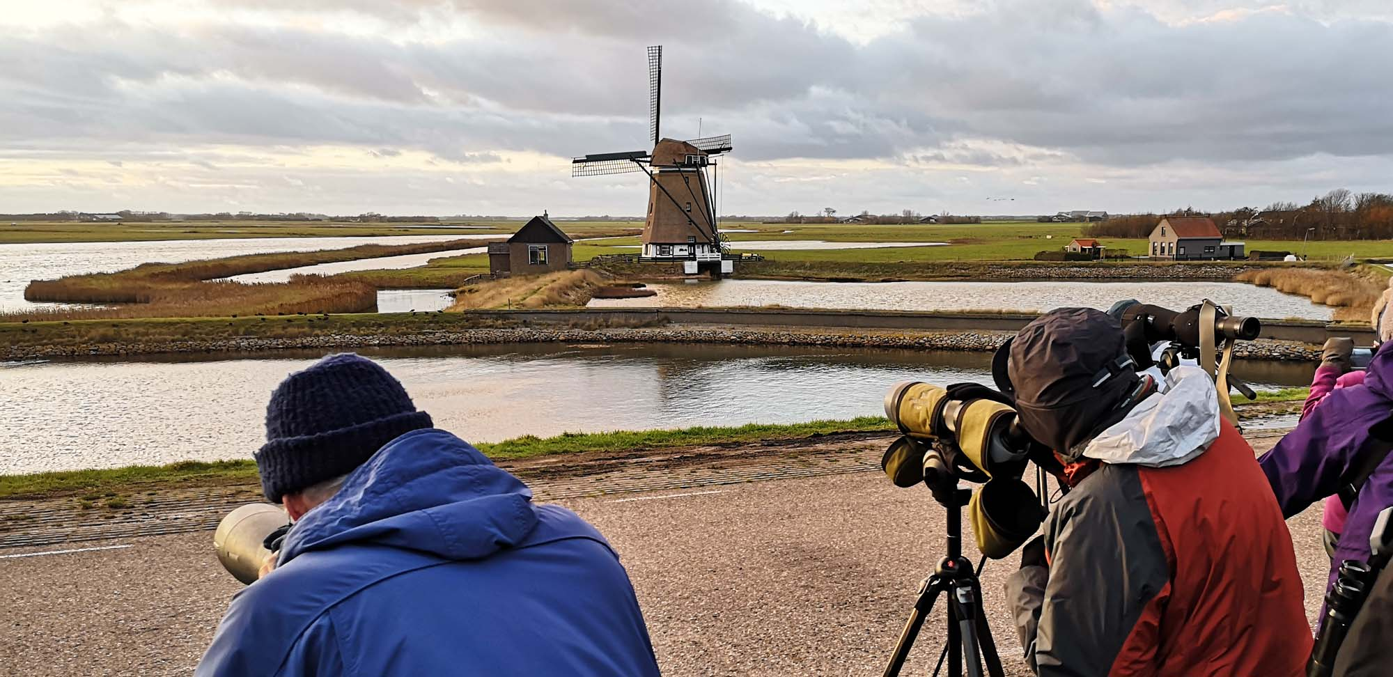 group birding Field Guides Birding Tours Netherlands (holland)