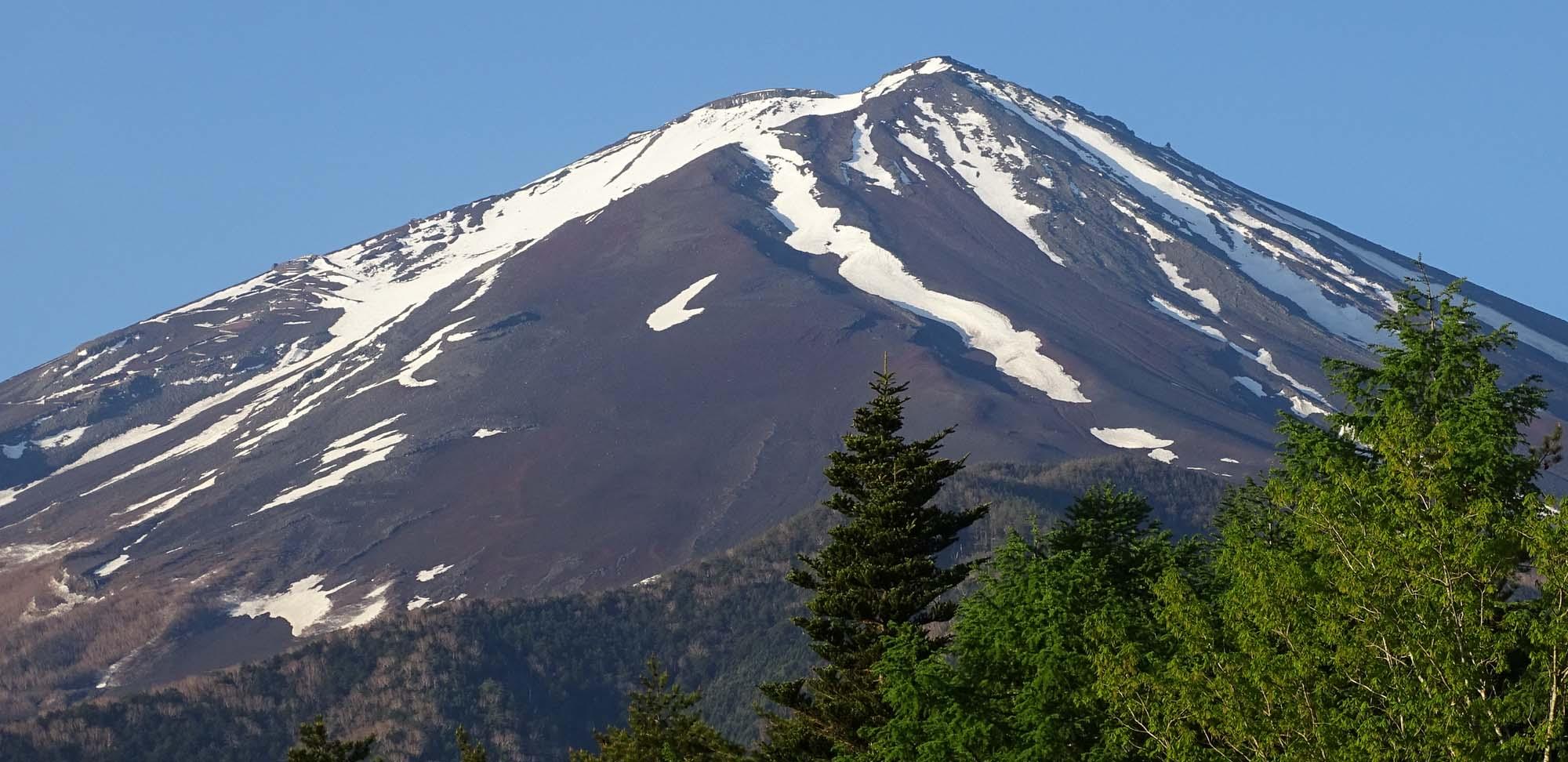 Mount Fuji Field Guides Birding Tours Japan